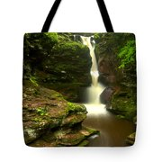 Red Rocks And Lush Green Forest Tote Bag
