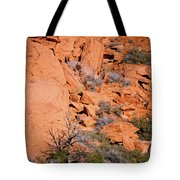 Red Rocks Tote Bag