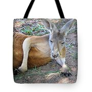 Red Roo Resting Tote Bag