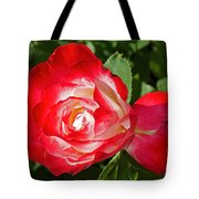 Red Rose And A Sidecar At Pilgrim Place In Claremont-california Tote Bag