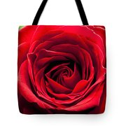Red Rose Colour Isolated On A Green Background. Tote Bag