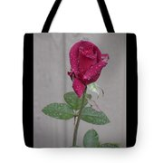 Red Rose In Rain Tote Bag