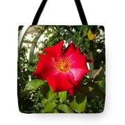 Red Rose In Summer Tote Bag