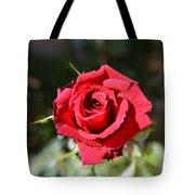 Red Rose Landscape Tote Bag