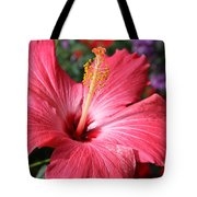 Red Rose Of Sharon  Tote Bag