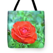 Red Rose On Natural Background With Green Leaves. Tote Bag