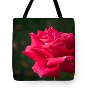 Red Rose Profile Tote Bag