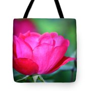 Red Rose Tote Bag by Teresa Mucha