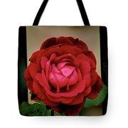 Red Rose  V2 Tote Bag