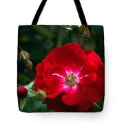 Red Rose With Buds Tote Bag