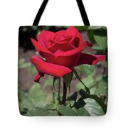 Red Rose With Stem Tote Bag