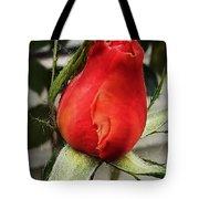 Red Rosebud  Tote Bag