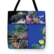 Red Sea Collage Tote Bag