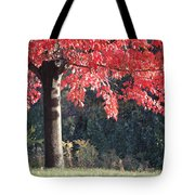 Red Shade Tree Tote Bag