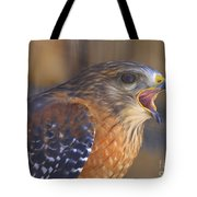 Red Shoulder Hawk Tote Bag