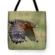 Red-shouldered Hawk Flight Tote Bag