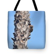 Red Shouldered Hawk On Palm Tree Tote Bag