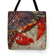 Red Spotted Crab Tote Bag