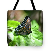 Red-spotted Purple 4172 Tote Bag