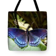 Red-spotted Purple 4257 Tote Bag