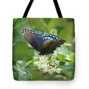 Red-spotted Purple Butterfly On Privet Flowers Tote Bag