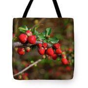 Red Spring Buds Tote Bag