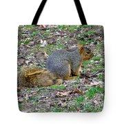Fox Squirrel 2 Tote Bag