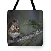 Red Squirrel Having Lunch Tote Bag