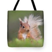 Red Squirrel In Vegetation Tote Bag