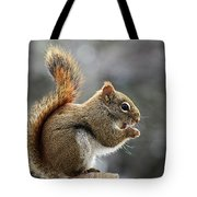 Red Squirrel On Wooden Fence II Tote Bag