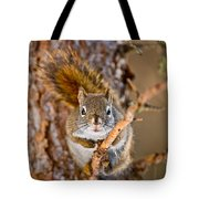 Red Squirrel Pictures 144 Tote Bag