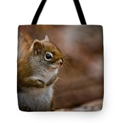 Red Squirrel Pictures 170 Tote Bag