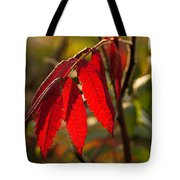 Red Sumac Leaves Tote Bag