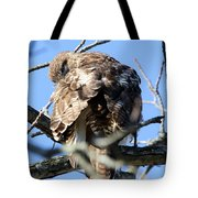Red Tail II Tote Bag