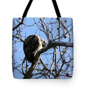 Red Tail IIi Tote Bag