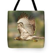 Red Tailed Hawk Hunting Tote Bag