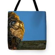 Red Tailed Hawk  IIi  Tote Bag