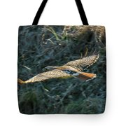 Red Tailed Hawk  In Flight Tote Bag