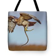 Red-tailed Hawk In Flight With Snake Tote Bag