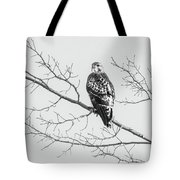 Red-tailed Hawk On Perch Tote Bag