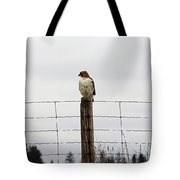 Red Tailed Hawk On The Lookout Tote Bag