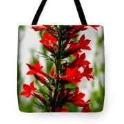 Red Texas Plume Flowers Tote Bag