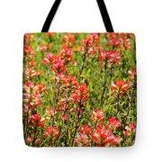 Red Texas Wildflowers Tote Bag