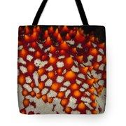 Red Thorns Of A Sea Star, Pentaceraster Tote Bag