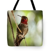 Red Throated Hummingbird Tote Bag