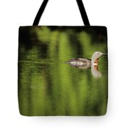 Red Throated Loon Tote Bag
