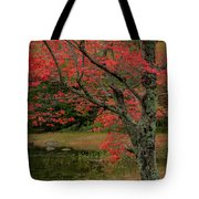 Red Tree II Tote Bag by Gary Lengyel