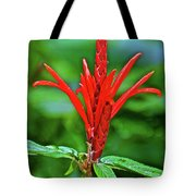 Red Tropical Flower In Huntington Botanical Gardens In San Marino-california  Tote Bag