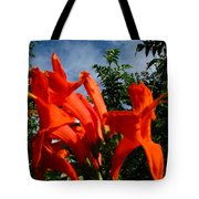 Red Trumpeter Tote Bag