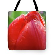Red Tulip Flower Macro Artwork 16 Floral Flowers Art Prints Spring Dew Drops Nature Art Tote Bag
